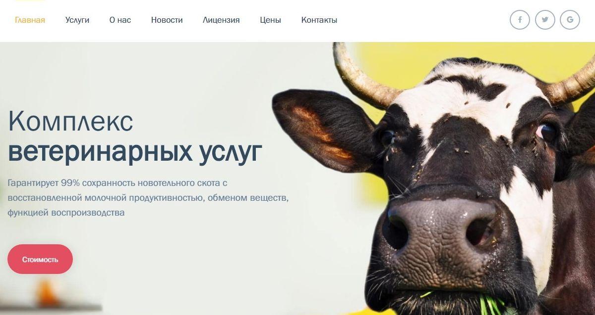 Создание сайта в Витебске для компании «АгроКластер» - агентство 50 текс